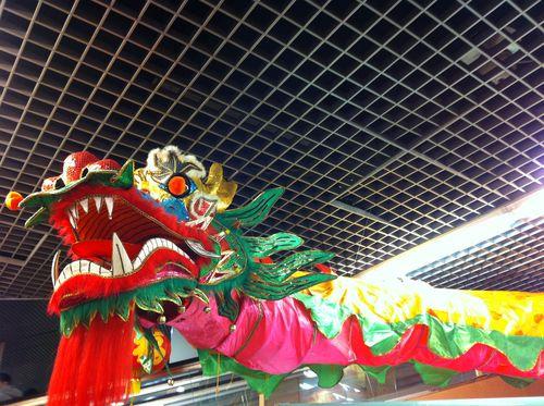 Année Dragon 5